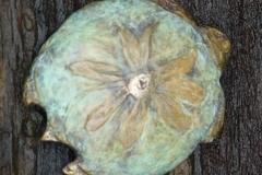 sunflowerturtle