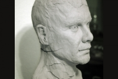 Male_bust_right_side